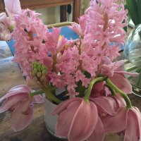 Pink makes me happy, and love Hyacinths